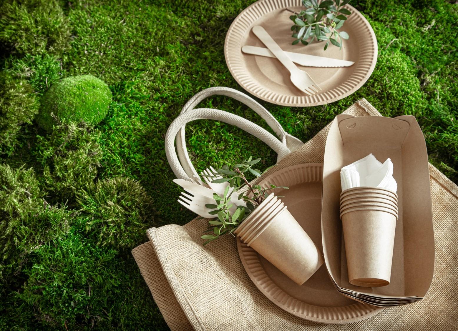 Implementacja dyrektywy w sprawie ograniczenia wpływu niektórych produktów z tworzyw sztucznych na środowisko